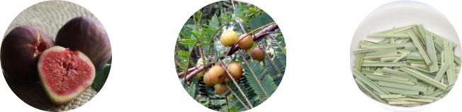 アーユルヴェーダに基づいて作られた、血行を改善し発汗を助けるサーラクタオイル